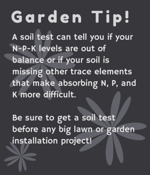 Garden Tip - Get Your Soil Tested - Great Garden Supply